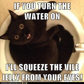 IF YOU TURN THE WATER ON  I'LL SQUEEZE THE VILE JELLY FROM YOUR EYES!