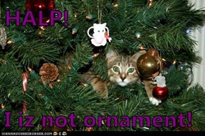 HALP!  I iz not ornament!