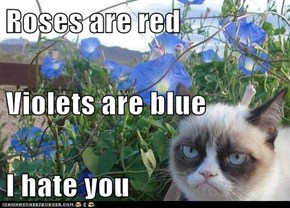 Roses are red Violets are blue I hate you