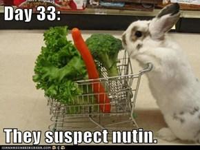 Day 33:  They suspect nutin.