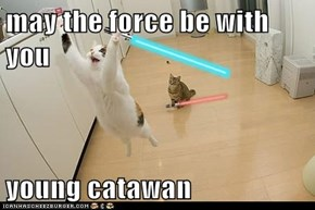 may the force be with you  young catawan