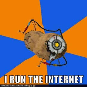 I RUN THE INTERNET