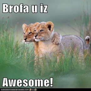 Brofa u iz   Awesome!