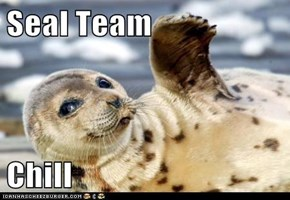 Seal Team  Chill