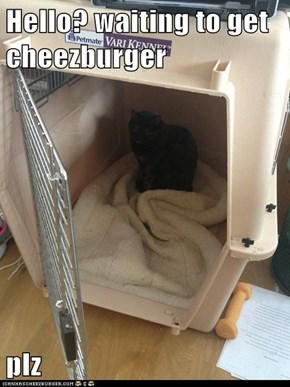 Hello? waiting to get cheezburger  plz