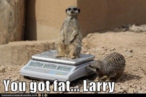 You got fat... Larry