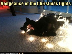 Vengeance of the Christmas lights