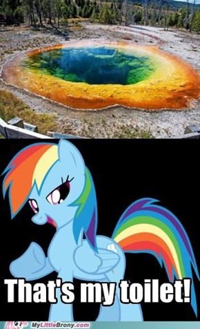 Rainbow Piss