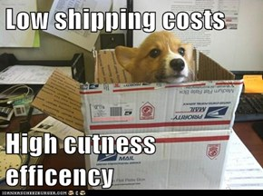 Low shipping costs  High cutness efficency