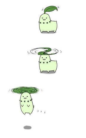 Chikorita Used Fly!