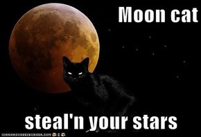 Moon cat  steal'n your stars
