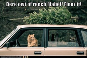 Dere owt of reech Mabel! Floor it!