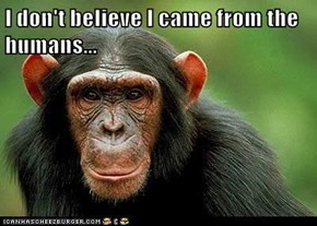I don't believe I came from the humans...
