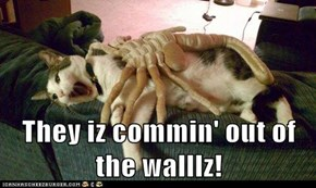 They iz commin' out of the walllz!