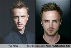 Tom Felton  Totally Looks Like Aaron Paul (Breaking Bad)