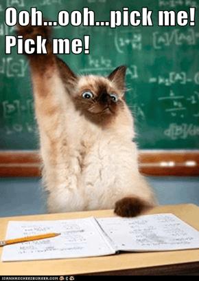 Ooh...ooh...pick me! Pick me!