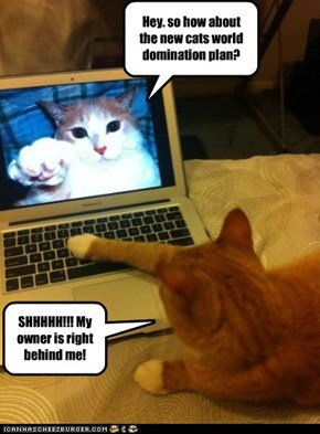 I would watch your cat if I were you...
