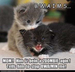 Zoombies wants BWAIMS...