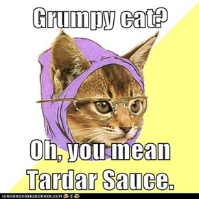 Grumpy cat?  Oh, you mean Tardar Sauce.