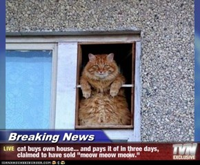"Breaking News - cat buys own house... and pays it of in three days, claimed to have sold ""meow meow meow."""