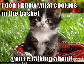 I don't know what cookies in the basket  you're talking about!