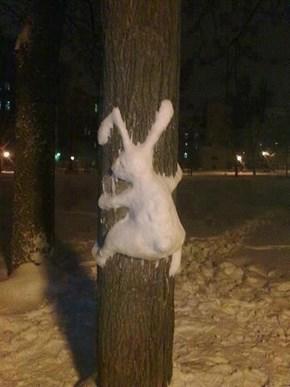 Snow Bunny WIN