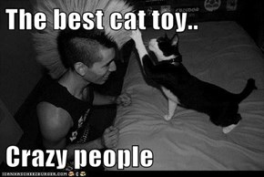 The best cat toy..  Crazy people