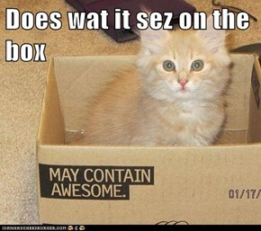 Does wat it sez on the box