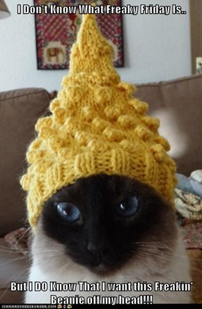 I Don't Know What Freaky Friday Is..  But I DO Know That I want this Freakin' Beanie off my head!!!