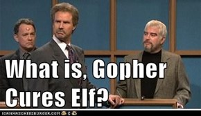 What is, Gopher Cures Elf?