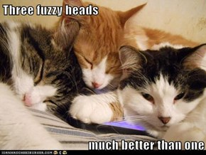 Three fuzzy heads  much better than one
