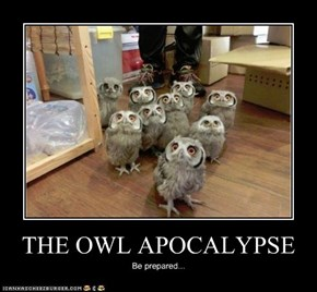 THE OWL APOCALYPSE