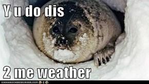 Y u do dis  2 me weather