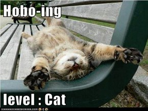 Hobo-ing  level : Cat