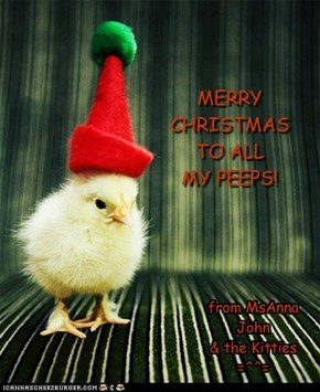 MERRY CHRISTMAS  TO ALL MY PEEPS!