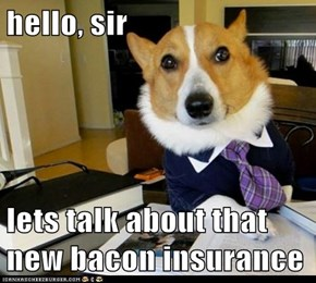 hello, sir  lets talk about that new bacon insurance