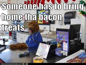 Someone has to bring home tha bacon treats
