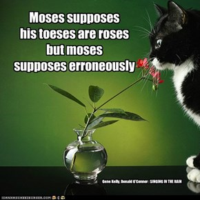 Moses supposes his toeses are roses but moses supposes erroneously
