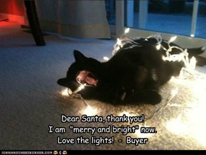 Buyer's Haiku Letter to Santa