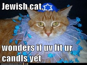 Jewish cat,  wonders if uv lit ur candls yet