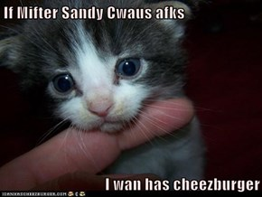 If Mifter Sandy Cwaus afks  I wan has cheezburger