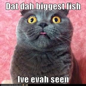 Dat dah biggest fish  Ive evah seen