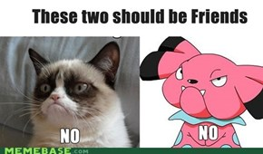 Snubbull and Grumpy Cat