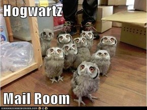 Hogwartz  Mail Room