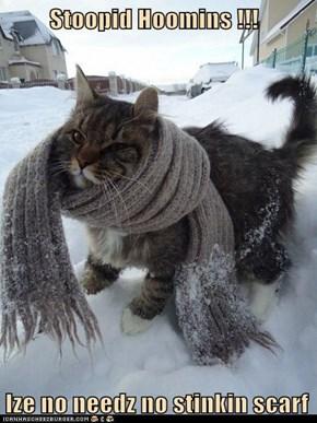 Stoopid Hoomins !!!  Ize no needz no stinkin scarf