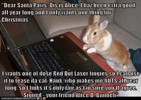 """Dear Santa Paws: Dis is Alice. I haz been extra good all year long and I only wants one thing for Christmas :  I wants one of dose Red Dot Laser fingies so I can use it to tease da cat, Hank, who.makes me NUTS all year long, so I finks it's only fair as"