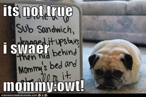 its not true i swaer mommy:owt!