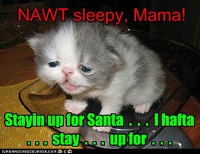 Go to bed, baby. Santa won't come till you're asleep, anyway.
