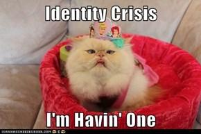 Identity Crisis  I'm Havin' One