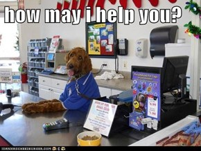 how may i help you?